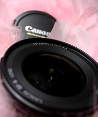 365.41 - Favorite Lens (yoshiffles) Tags: pink favorite canon lens wideangle boa 1022mm 365x2009