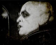 Viernes 13 (rosa_rusa) Tags: madrid home vampire vampiro friday13 inmyhome enmicasa viernes13 rosarusa klausinmyhome