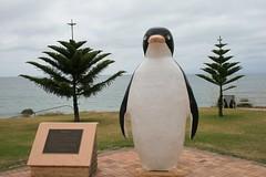 The Giant Penguin at Penguin Tasmania (spacountry) Tags: tasmania tassie tasmania2009