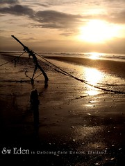 Slope Rope (The SW Eden ( )) Tags: pink flowers trees red sea sky flower tree green beach water thailand gold golden sand sweden wave rope palm resort thai sw eden tale slope         rebeang rebeangtale bringdogtothebeach   teredos sloperope