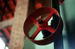 (Daniel Pascoal) Tags: film analog 35mm fuji pentax sjc filme parquedacidade sojosdoscampos pentaxme danielpg fujiqualityii100 danielpascoal