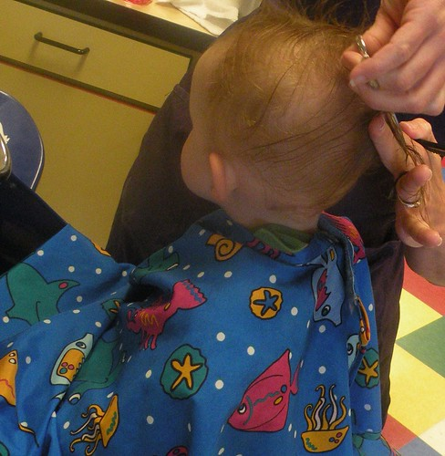 The inaugural cutting of the mullet