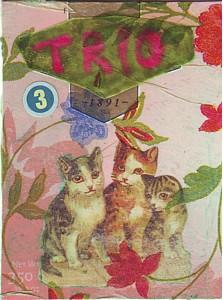 A Trio!