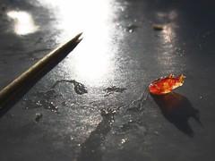 il Boccon della Creanza (guercio) Tags: ham toothpick osmiza stuzzicadenti affettati