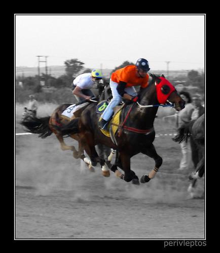 Horses On Air