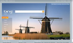 Bing1.jpg