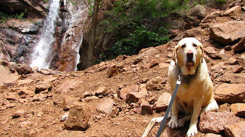 Sadie poses in front of the waterfall