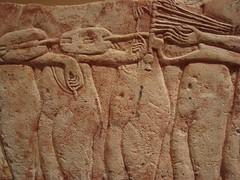 Tuning Up (meechmunchie) Tags: revolution 18thdynasty akhenaten tutankhamen tutankhamun tutankhamon thutmose amarna tuthmose talatat akhetaten atenist egyptiancourt