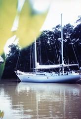 871017 Amazon Side Stream (rona.h) Tags: brazil amazon cloudnine ronah bowman57