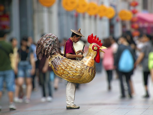 Guangzhou Chicken Man