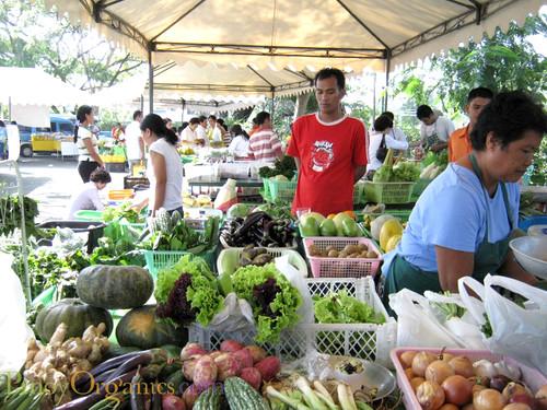 AAV Market-veggie sellers