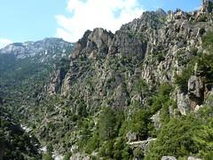 Sur le sentier du Tavignanu en RG : les falaises de Rossolinu
