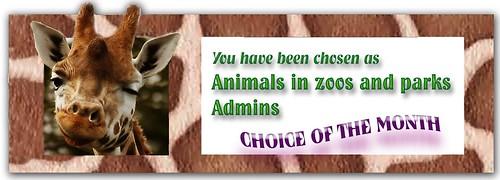 Animals in Zoos & Parks Admin Choice award