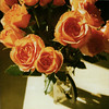 93//365 : orange roses (Leah Reich) Tags: california flowers roses orange myself square polaroid sx70 adorable frenchpress 600 february orangecounty costamesa arrangement 2009 sayso threeyears project365 hoorayfor ifido nondfilter soiimprovised andyouknowwhat inparticular irealized thatidontown asingledecentvase andusedmy itmadean psmyfirstpolasquare thankstoclaire whoisagenius