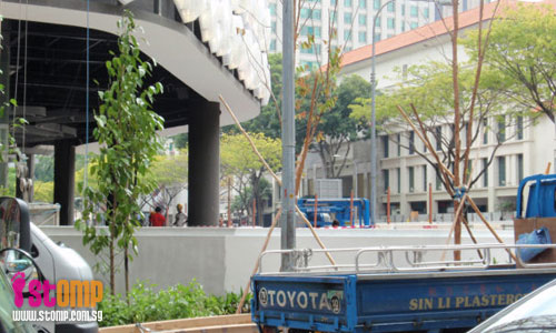 'Instant trees' to add greenery to our concrete jungle
