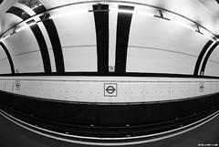 Precarie illusioni (StellaStyles) Tags: uk england bw london train underground blackwhite unitedkingdom tube platform railway bn illusion londra treno metropolitana regnounito biancoenero inghilterra binari gloucesterroad illusione precaria