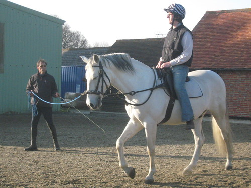 Riding in a lunge lesson