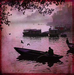 Pertaining to an Ethereal World (designldg) Tags: pink people india man bird heritage water rose mystery photography boat heaven colours view purple magic dream atmosphere panasonic silence soul ethereal varanasi shanti allegory soe lightness ganga celestial supernatural ganges ghats benaras uttarpradesh  insubstantial indiasong infinestyle dmcfz18 creattivit