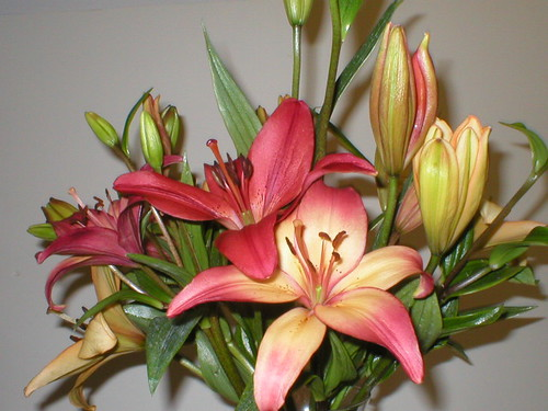 LILY BOUQUET 3