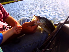 Picture 046 (crazydude713) Tags: ocean summer sun fish water kids sunrise fun fishing pond bass bigfish firstkiss sunsetdolpine