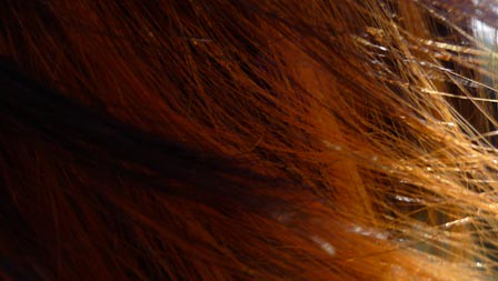 Close up of orange hair