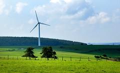 """Le dbut de l'affaire """"Pissenlits"""" (Jessie Romaneix ) Tags: trees france vent energy wind plateau air energie country arbres lanscape creuse limousin olienne millevaches pigerolles"""