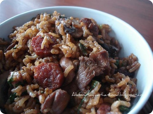 Easy Claypot Rice - Part II