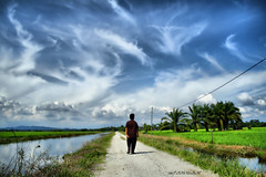 I dreamed, i walked to the sky (azfar ahmad | thepatahtumbuh) Tags: