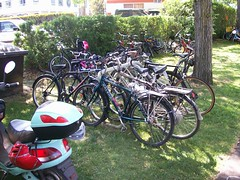 The one bike rack in Willows Park, packed