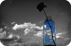 Entre nubes (Sinistralis) Tags: blue sky bw white black blanco rose azul negro rosa cielo nubes verano botella jarron