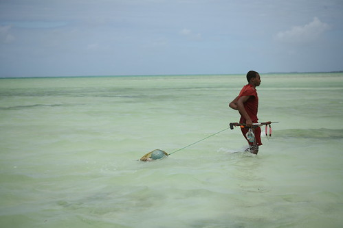 man in the sea with spear