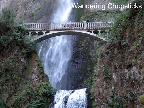 Day 4.3 Multnomah Falls - Columbia River Gorge - Oregon 3
