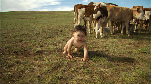 The Mongolian tyke is one of four 'Babies' followed by a documentarian for about a year and a half.'