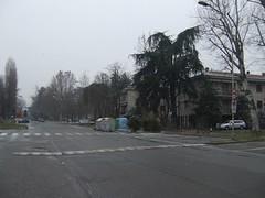 Strada non innevata, ma con qualche fiocco che cade (CasteFoto) Tags: trees snow alberi country campagna neve di snowing quarta bolognese bassa nevicata fiocchi inferirore