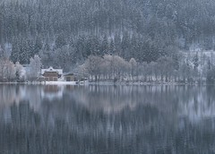 TitiseesitiT (: Bill d' Err) Tags: schnee winter snow reflections schwarzwald blackforest titisee spiegelungen