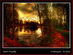 Nature's Tranquility (Irishphotographer) Tags: park autumn trees ireland sunset wallpaper sky irish lake tree art history archaeology nature water beauty sunshine birds naked landscape golden early interesting rocks wildlife dragons shore elements homestead fairies sureal skys hdr inmydreams irishart kinkade beautifulireland themyths hdrunlimited nakedbeauty peatlands colorphotoaward besthdr imagesofireland colourartaward worldwidelandscapes pentaxk20d natureselegantshots rockeryshots goldenvisions kimshatwell irishphotographerkimshatwellireland irishcalender09 irishphotographer irishcountryscene breathtakingphotosofnature beautifulirelandcalander wwwdoublevisionimageswebscom