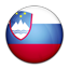 Flag of Slovenia PNG Icon