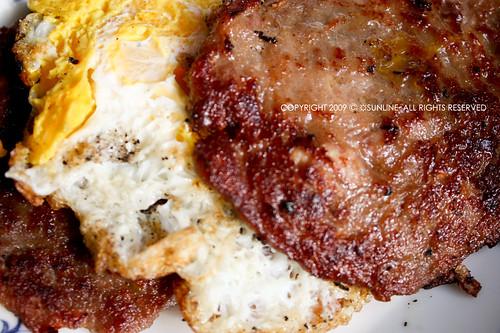 [20090123]漢堡肉蛋
