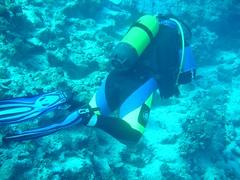 DSC03388 (flip_lmb) Tags: egypt scuba diving el gouna elgouna