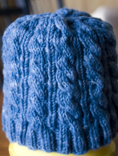 Erik's Cabled Hat, Detail