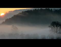 In the morning (bernhard.w) Tags: morning sun tree fog nebel sonne morgen baum frh