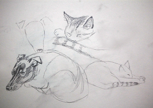 sketches of my dog and cat
