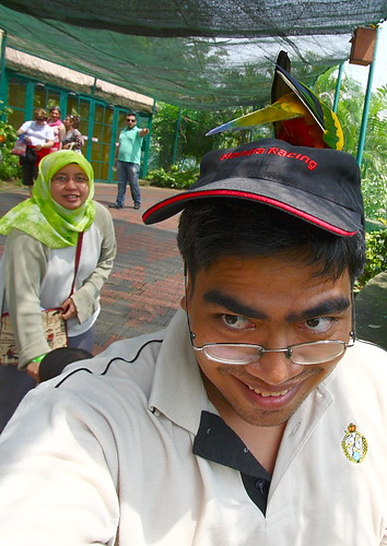 KL Bird Park | Silly bird at my head