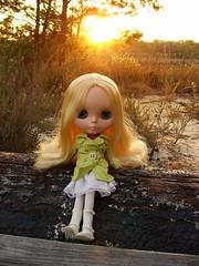 (blythe is go!) Tags: trees sunset doll florida blonde blythe ae palomino blythedoll dollheart rbl angelicaeve