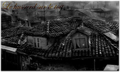 Le hussard sur le toit (angel pastor) Tags: old roof bw byn film 35mm tile 50mm decay toit pastor derelict decayed hussar digitallyremastered hussard angelpastor seebw