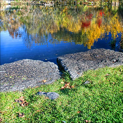 ~ The Pond  ~ (ViaMoi) Tags: travel ontario canada reflection fall 20d nature water colors digital forest canon reflections landscape photography pond image ottawa newmedia canadian reflect 2008 depth naturalist naturesfinest blueribbonwinner imagist ottawacanada mywinners abigfave platinumphoto anawesomeshot colorphotoaward aplusphoto diamondclassphotographer citrit theunforgettablepictures naturewatcher betterthangood viamoi goldstaraward damniwishidtakenthat 100commentgroup