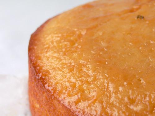 Mandarinenkuchen, mit Marmelade bestrichen