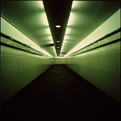 ... (motionid) Tags: old 120 6x6 film station matrix mediumformat t sydney australia tunnel minimal hasselblad 400 squareformat fujifilm provia400x distagon50mm motionid