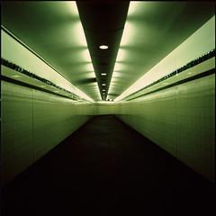 ... (motionid) Tags: old 120 6x6 film station matrix mediumformat t sydney australia tunnel minimal hasselblad 400 squareformat fujifilm provia400x distagon50mm motionid