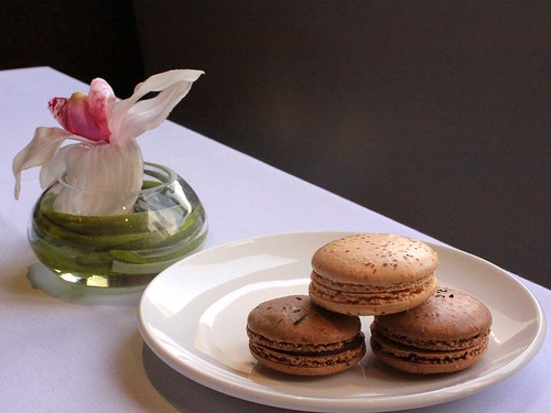Evan's Earl Grey and Salted Caramel macarons